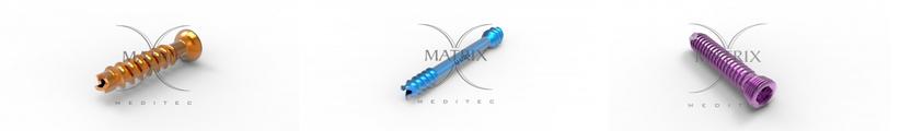 Orthopedic Screws